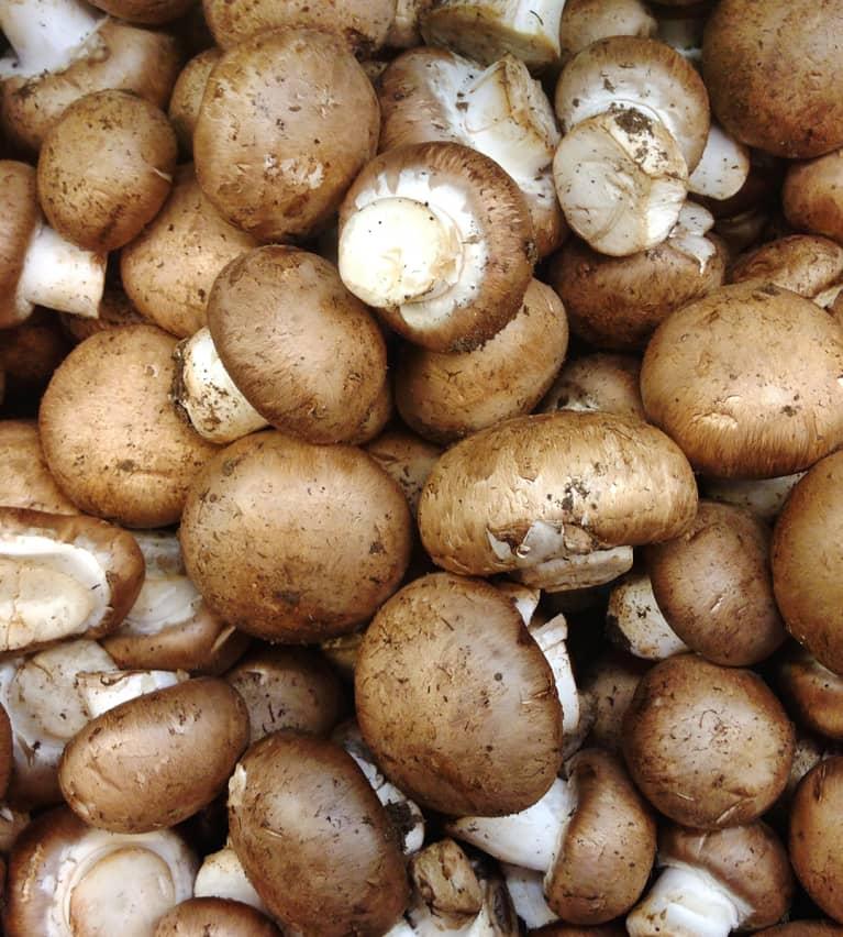 Crimini Mushroom