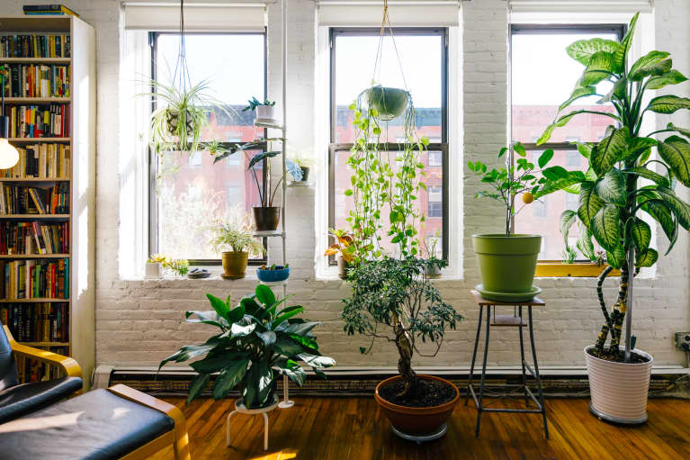 Feng Shui For Your Living Room: The Top Do's & Don'ts