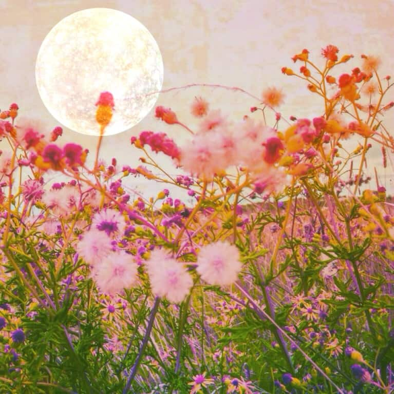 This Personalized New Moon Ritual Will Help You Manifest Your Heart's Desire