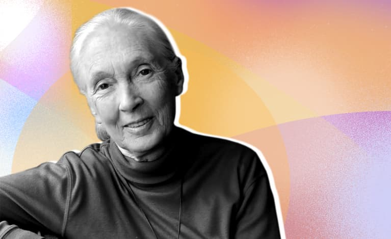 We Talked To Jane Goodall About Quarantine, Birds + The Future Of Conservation