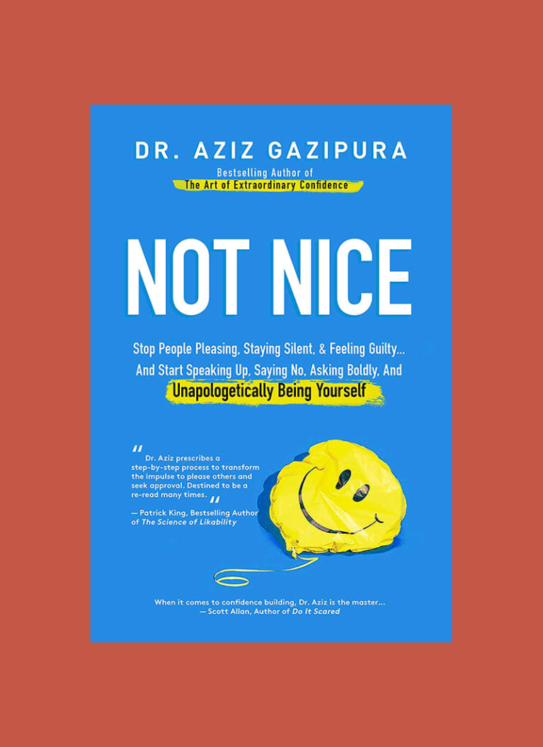Not Nice by Aziz Gazipura