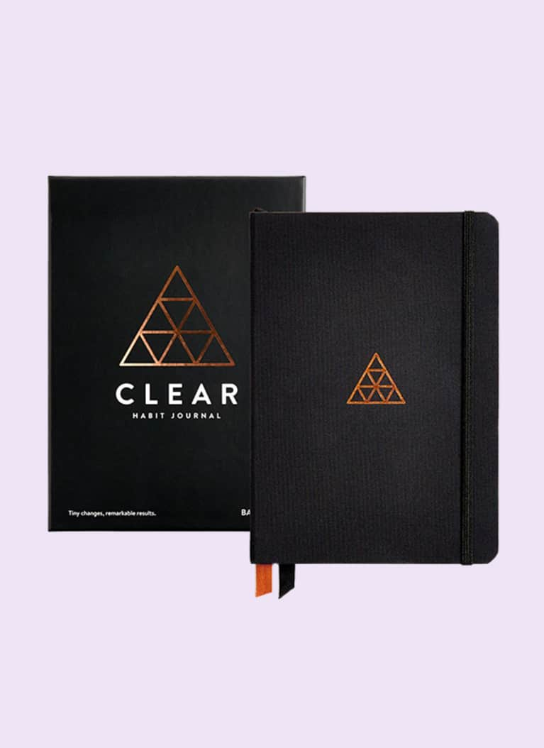 baron fig clear journal