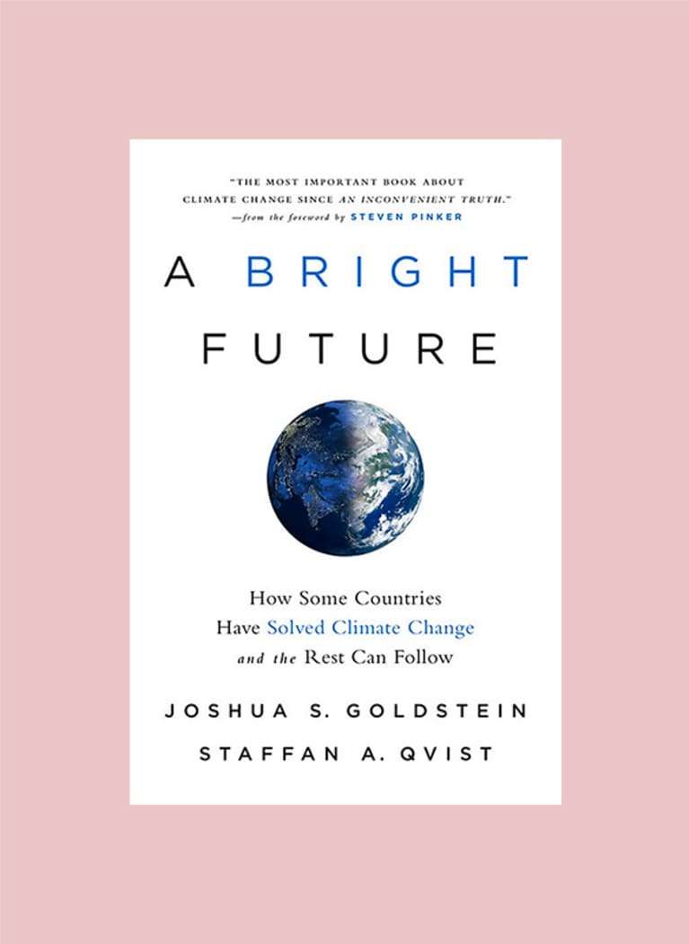 4. A Bright Future: How Some Countries Have Solved Climate Change and the Rest Can Follow