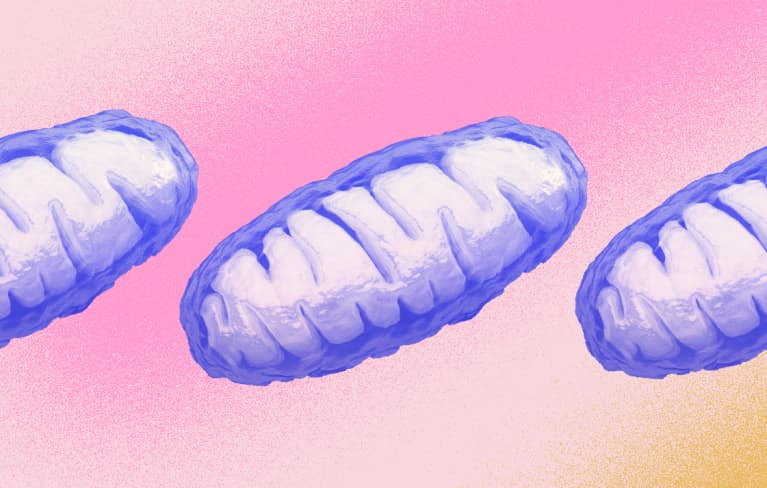 Why An MD Says You Should Prioritize Mitochondrial Health Right Now