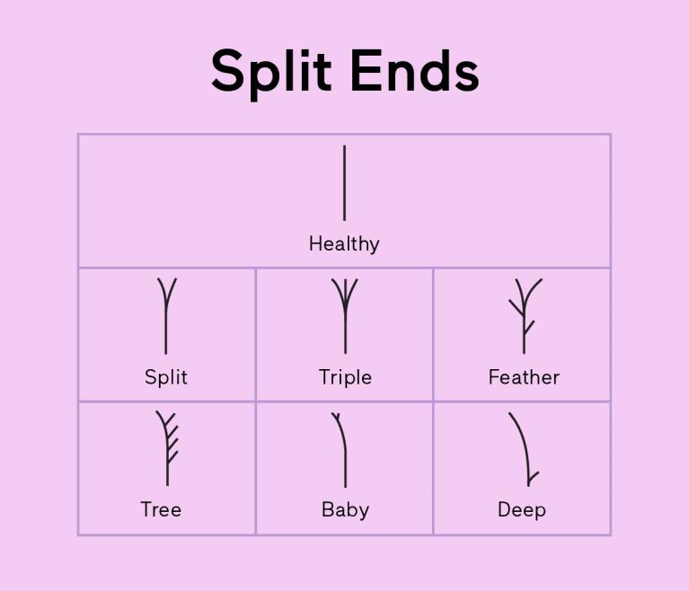 split ends chart