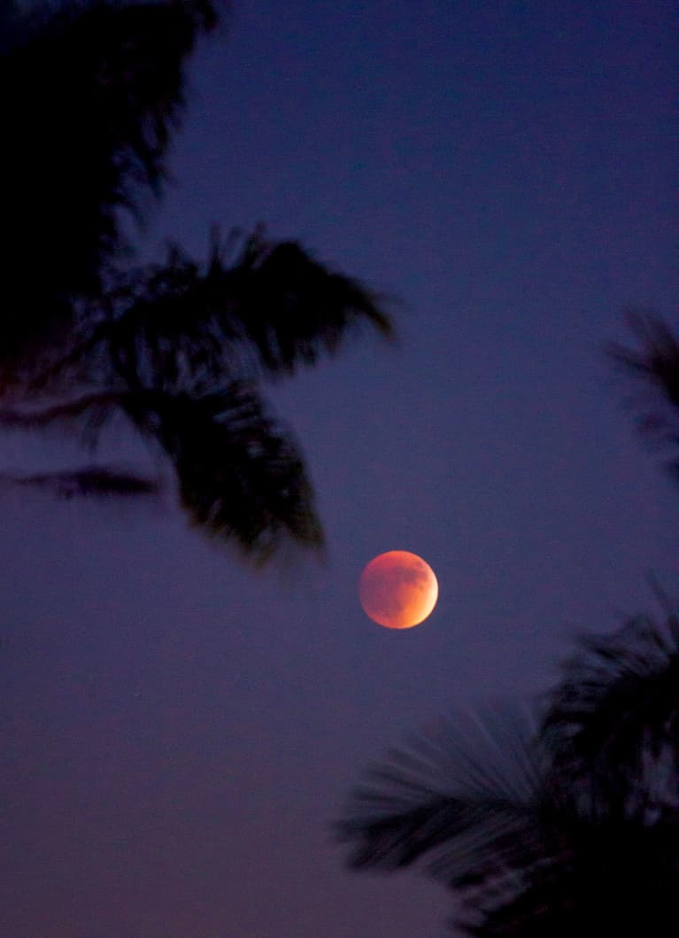 Super Blood Moon, Wolf Moon, Or Lunar Eclipse? Why January's Moon Is All 3