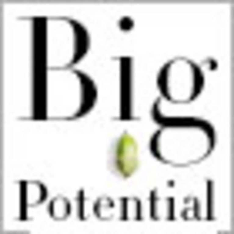 Shawn Achor, author of Big Potential